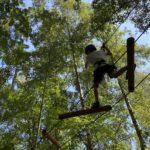 Park linowy - Półwysep Helski - Atrakcja dla dzieci i rodziny na Helu